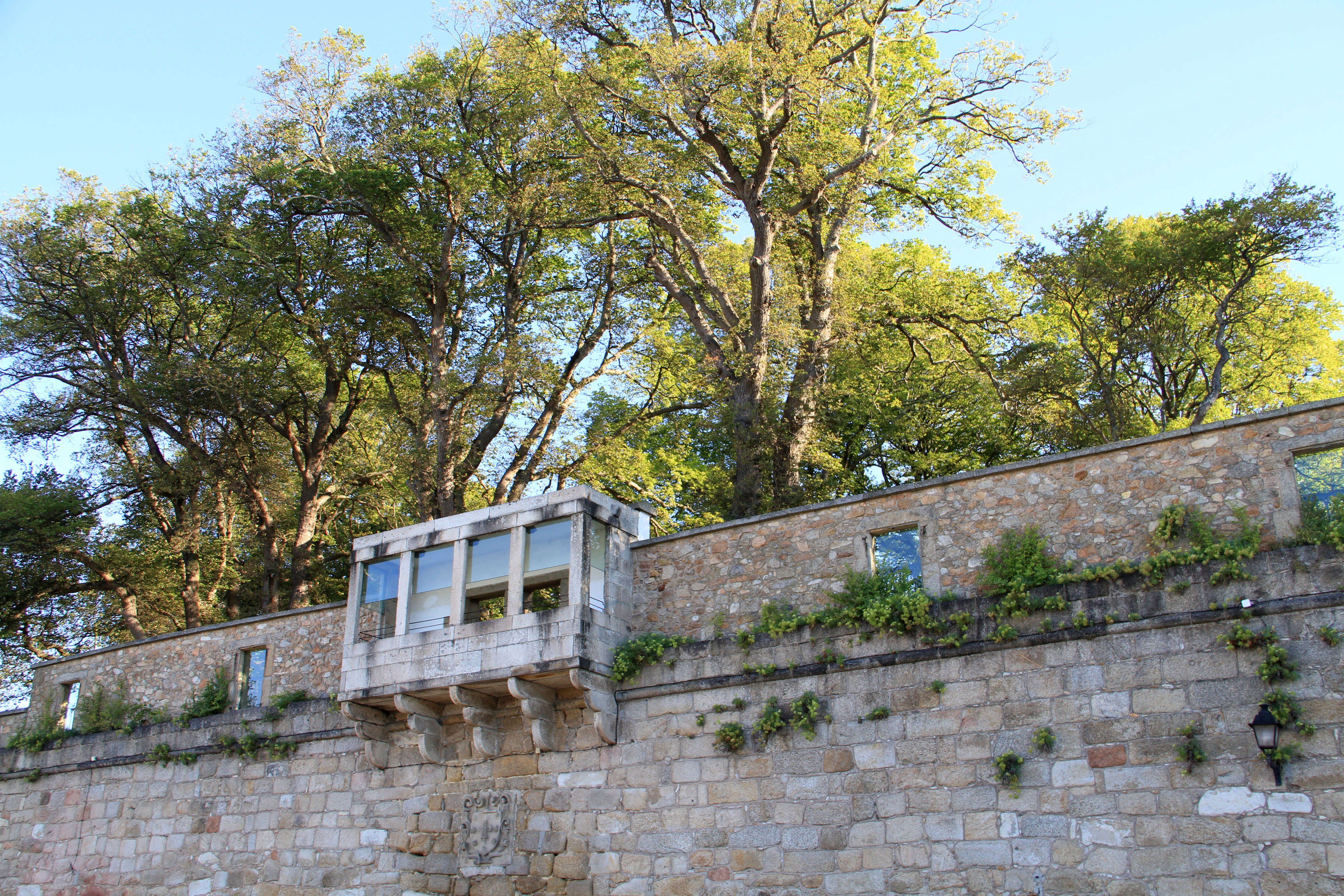 El jard n de san carlos galiciangarden for Jardin 81 san carlos