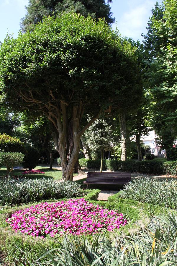 Jardín Botánico de Padrón | galicianGarden