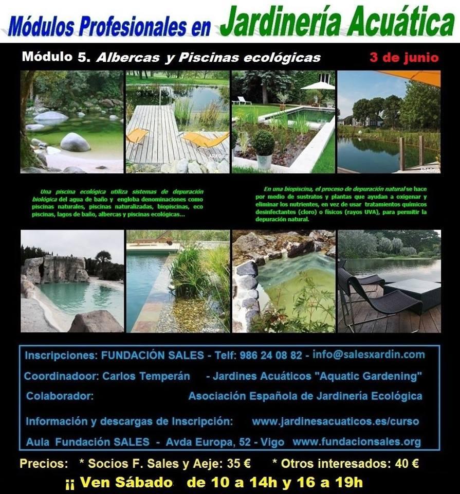 por plantas acuticas con el sistema ctb ciclo tecno biolgico para mantener la calidad del agua en albercas naturales y piscinas ecolgicas