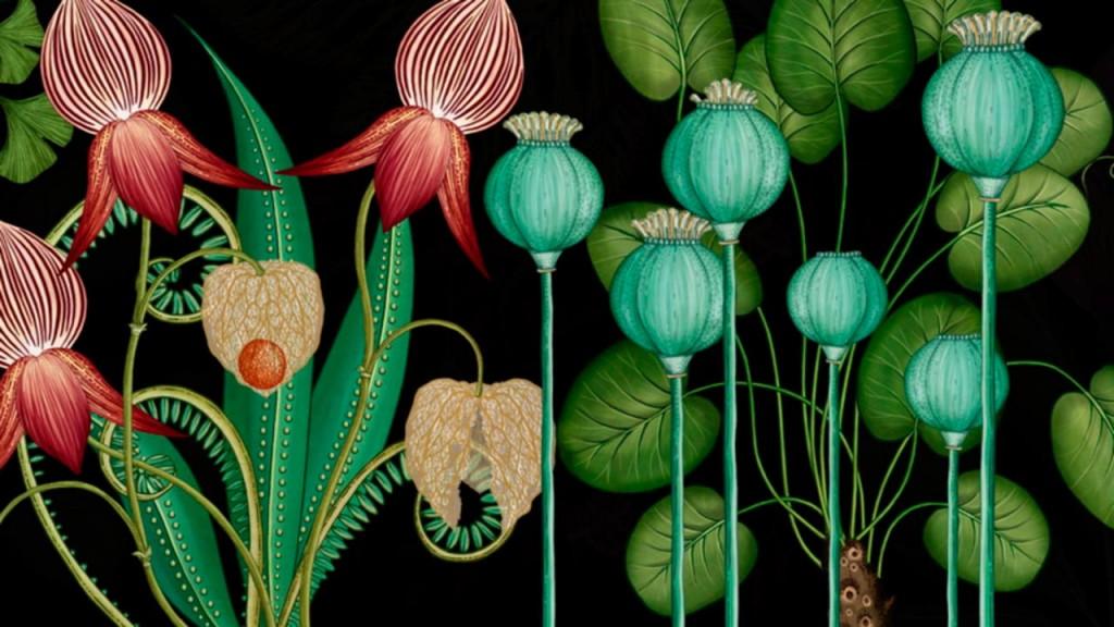 botanicum_3