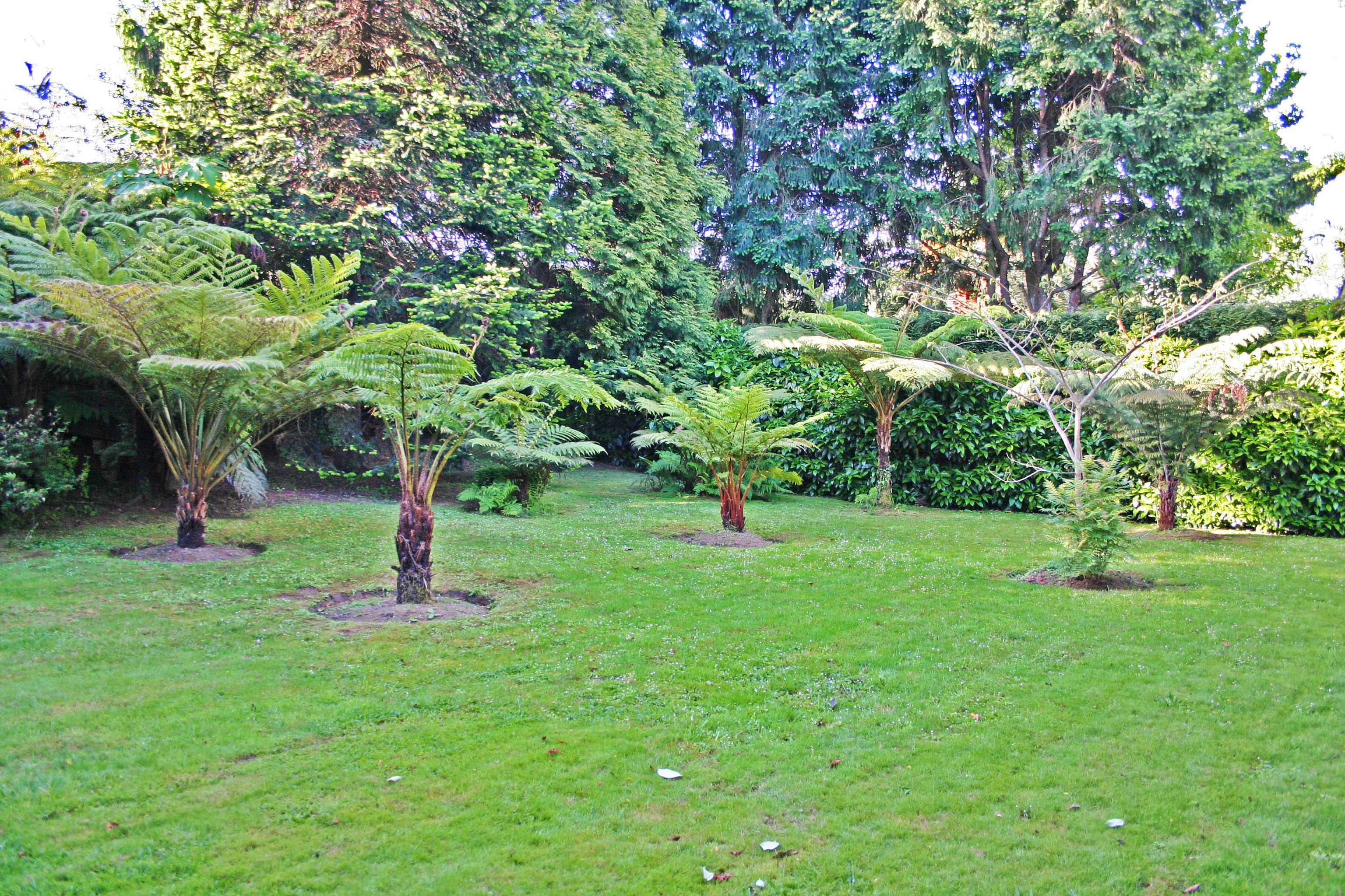 Finca a lavandeira jard n de helechos galiciangarden for Ver jardines