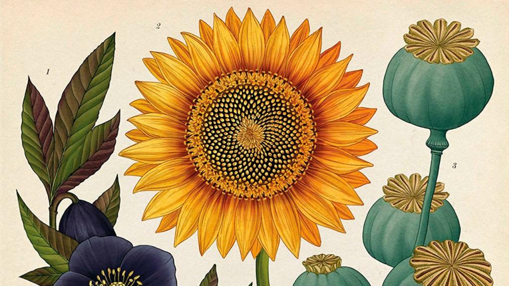 botanicum_4