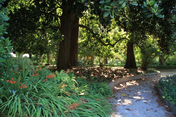 Jardín Botánico de Caldas de Reis