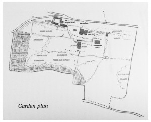 Plano_jardín