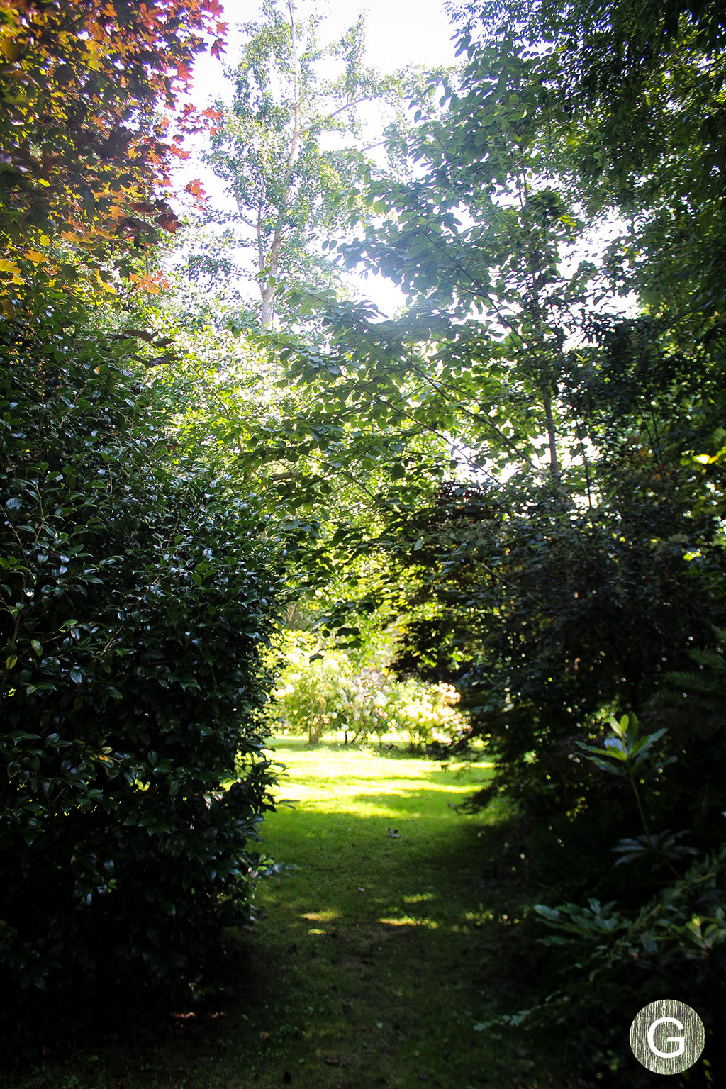 galiciangarden-caritel-IMG_7590